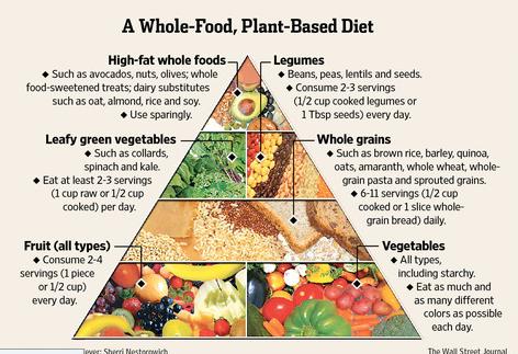 Best food pyramid
